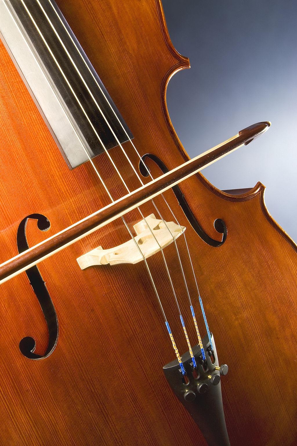 1024px-Cello_study